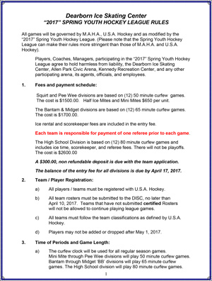 2007 Spring Youth Hockey League Rules